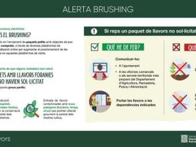 Què és el brushing?